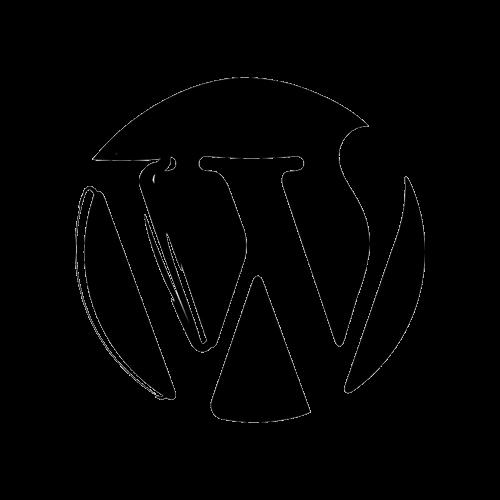 wordpress-logo-esquisse-megmedia-produit